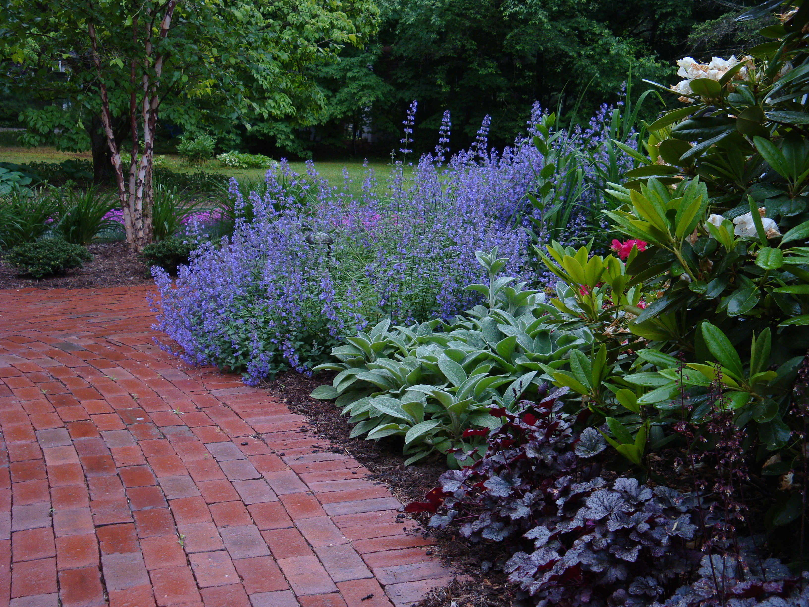 Garden ideas for Low maintenance garden