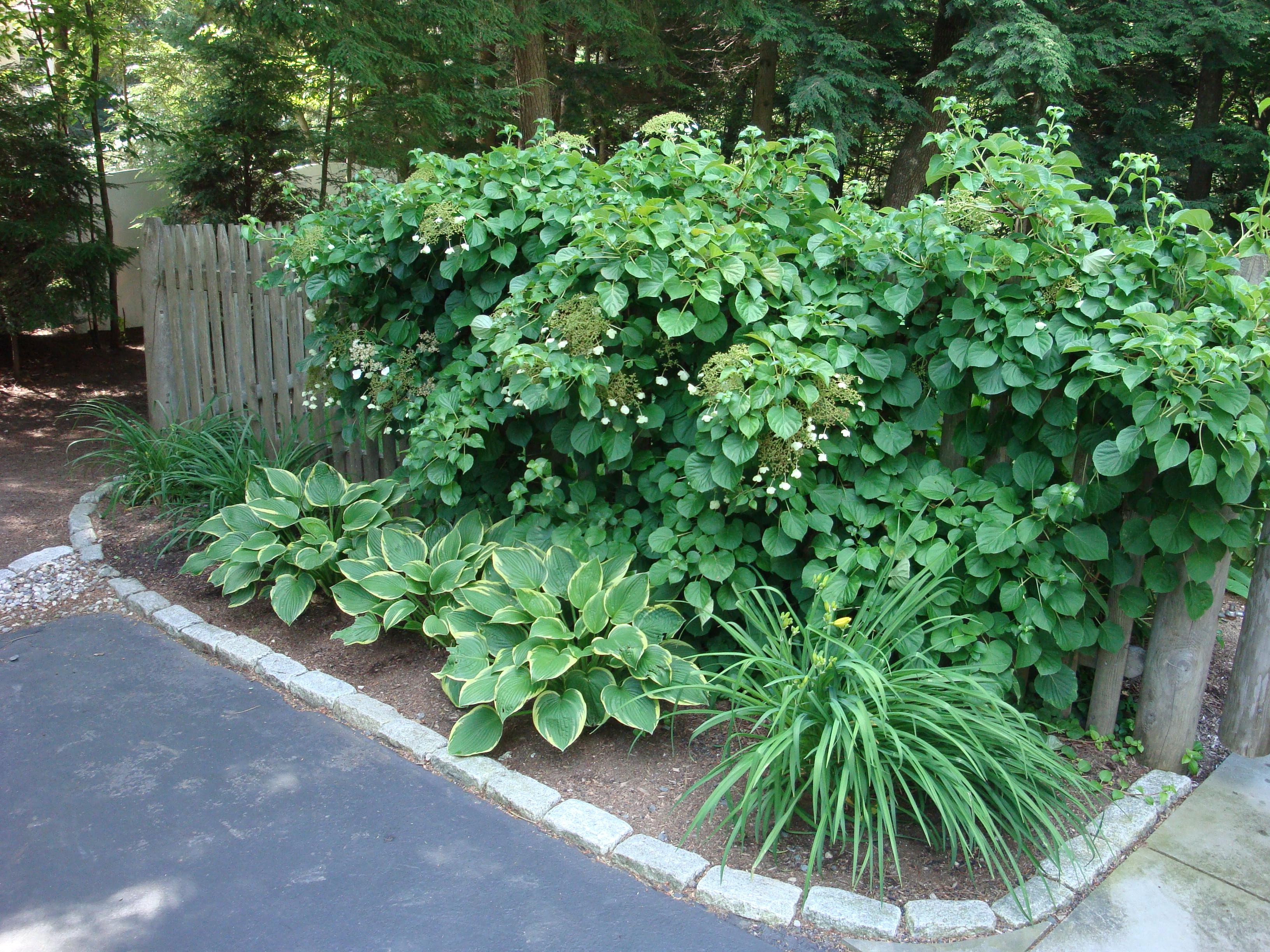 Garden Designers Roundtable Vertical Accents