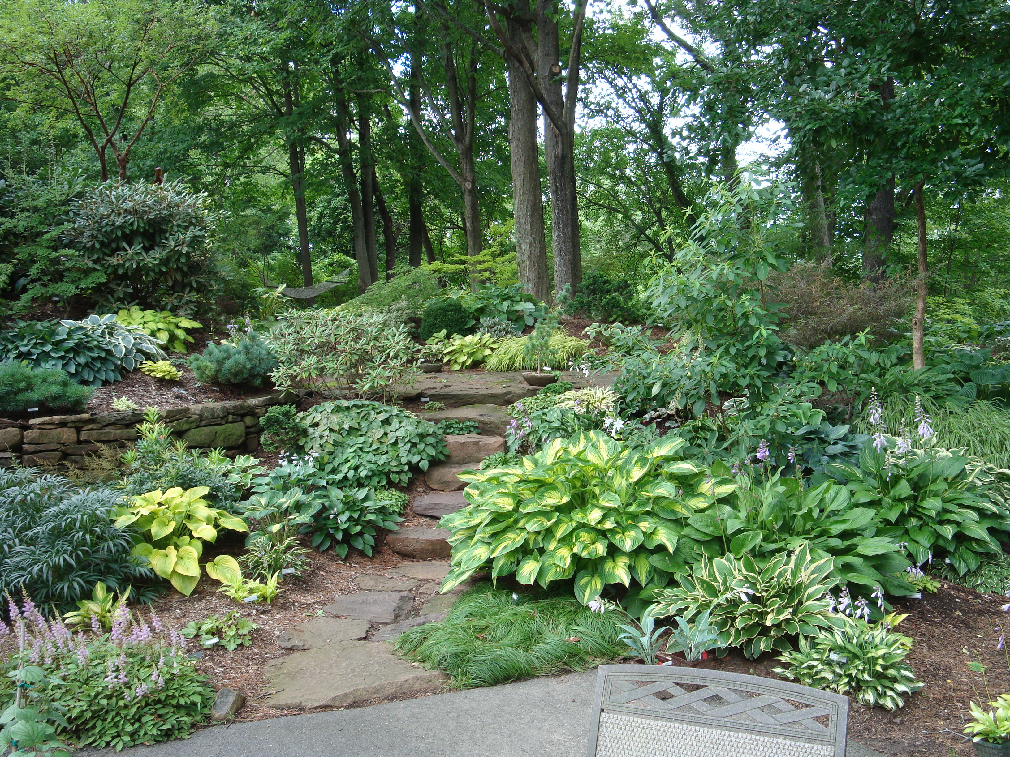 Image gallery shade landscaping for Stunning garden designs