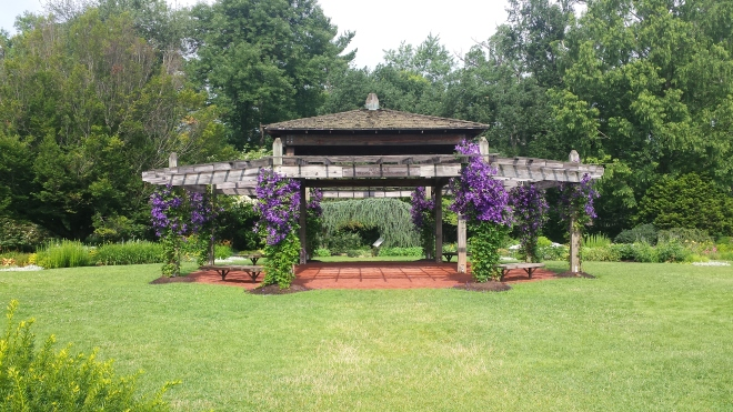 Perennial Garden at Elizabeth Park