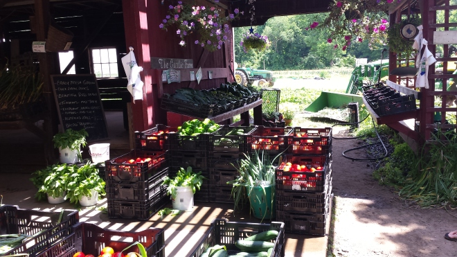#TheGarlicFarmCT in West Granby CT