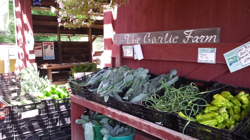The Garlic Farm in Granby CT